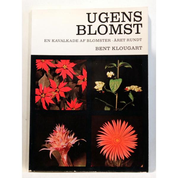 Ugens blomst - en kavalkade af blomster. Året rundt